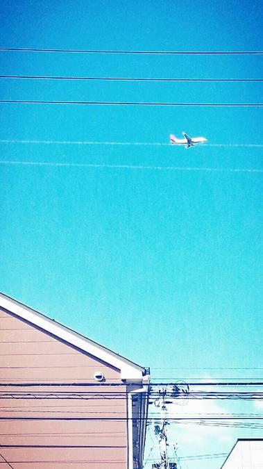 ソラ飛行機.jpg