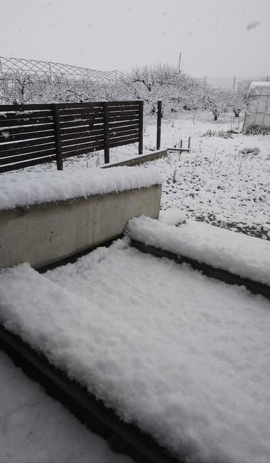 324雪.jpg
